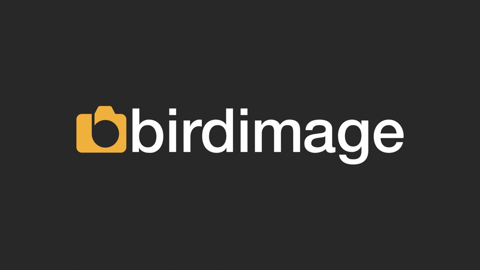 birdimage-identity-drawperfect-pfi